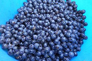Подготовка винограда