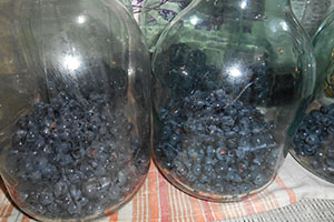 Раскладываем виноград по банкам