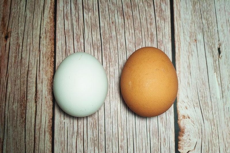 Самые вкусные салаты с яйцом