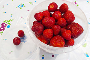 Замораживаем ягоды