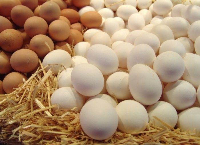 Три рецепта салатов с яйцами, которые вам понравятся
