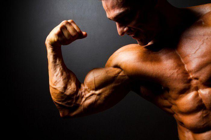 Как набрать мышечную массу перед соревнованиями